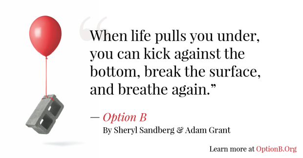 Book Review: Option B: Finding Adversity, Building